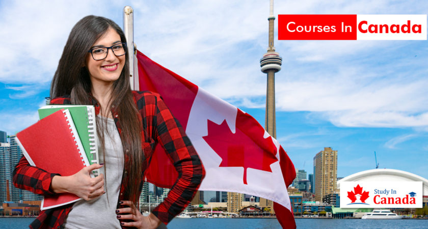 Popular courses in Canada after 12th
